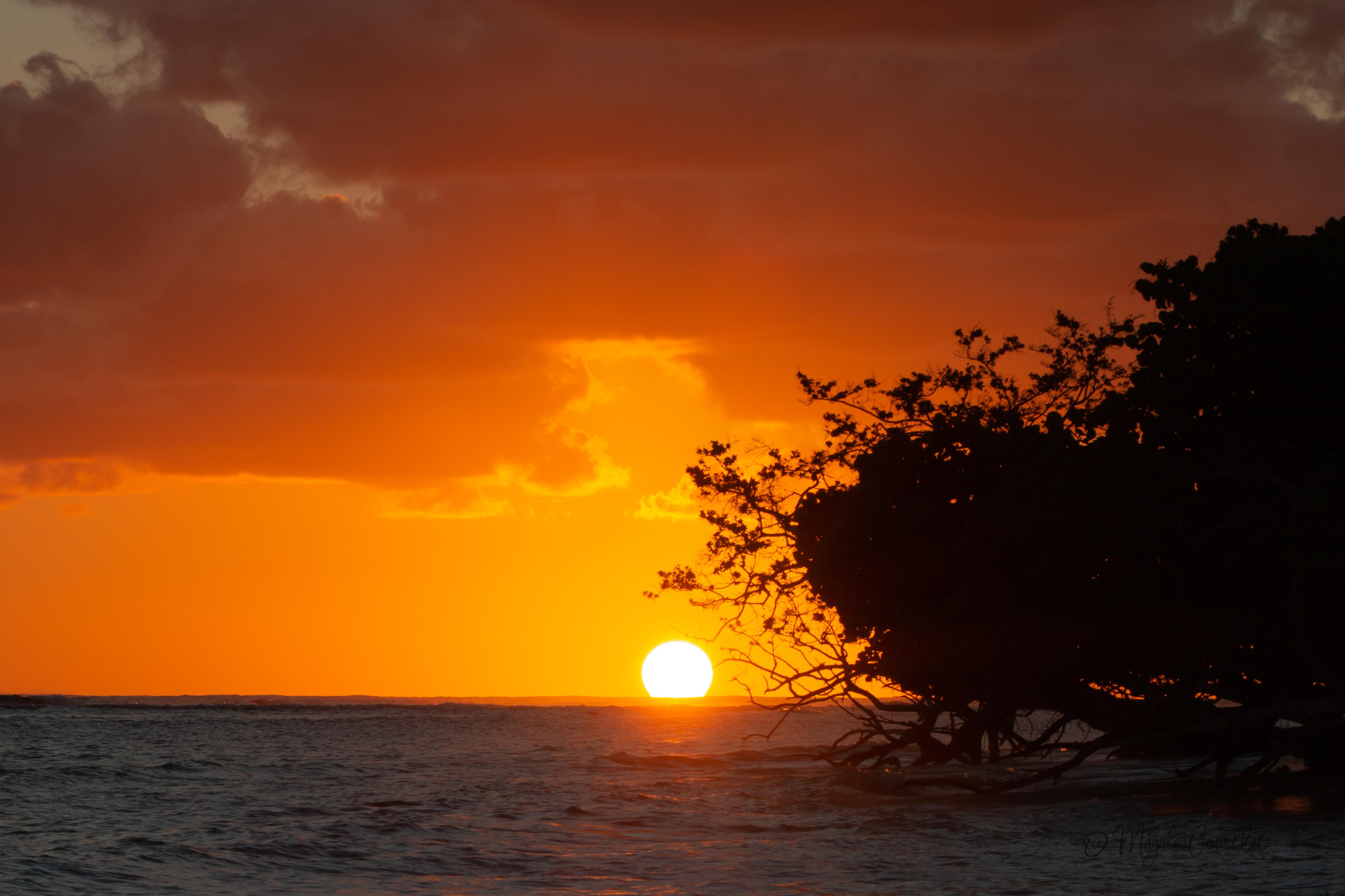 Photo d'une plage au coucher du soleils à Marie-Galante, Guadeloupe